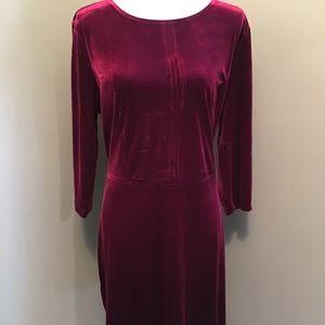 Charter Club PXL burgundy velvet dress